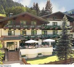 Hotel Gamshag 1
