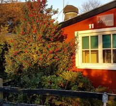 Ferienhaus für 3 Personen (40 Quadratmeter) in Graal-Müritz (Ostseeheilbad) 1