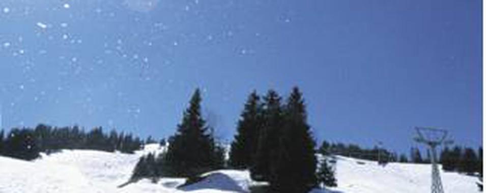 2005032 14