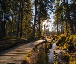 Deutschlands schönste Wandergebiete