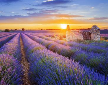 Provence – Sonne, Lavendelduft und jede Menge Savoir-vivre